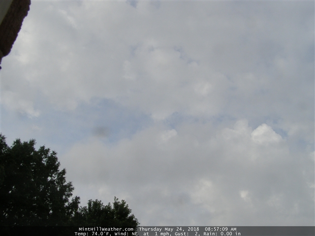 Live Weather Cam